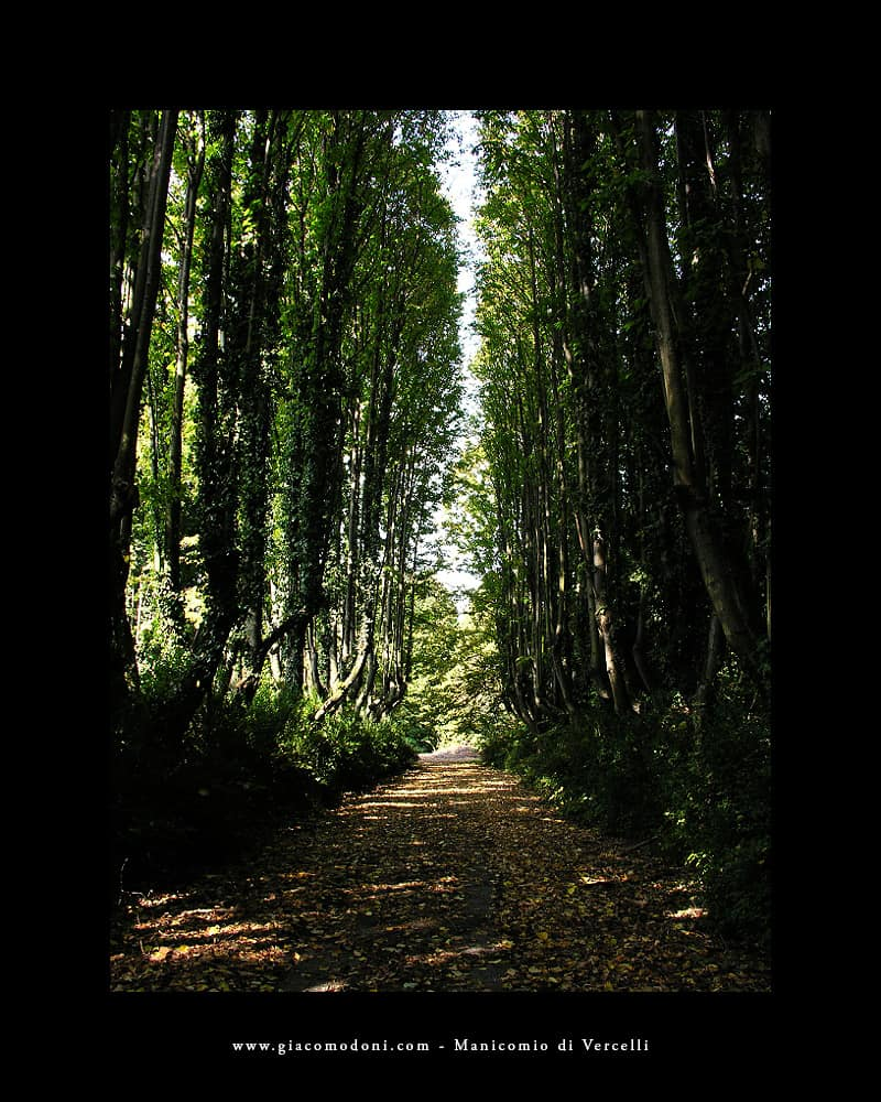 giardino ex manicomio vercelli