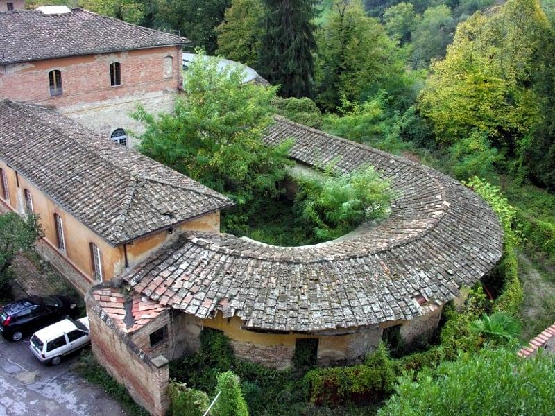 Conolly Siena