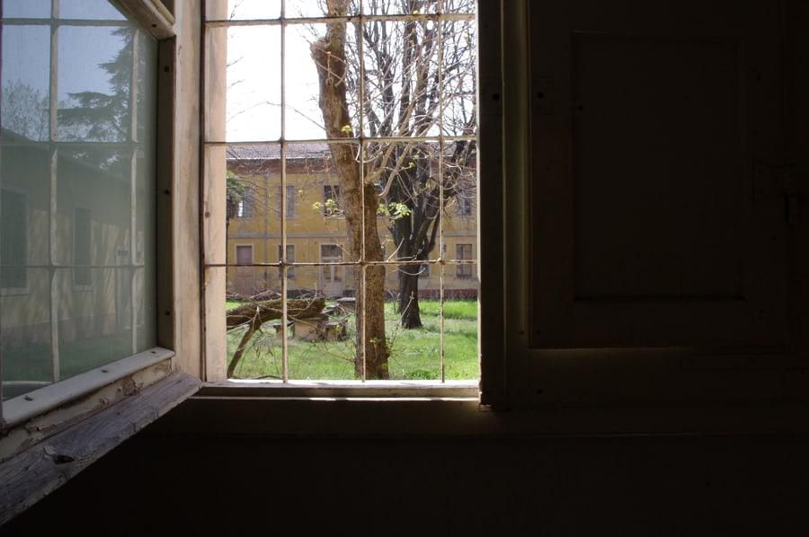 Finestra aperta con albero